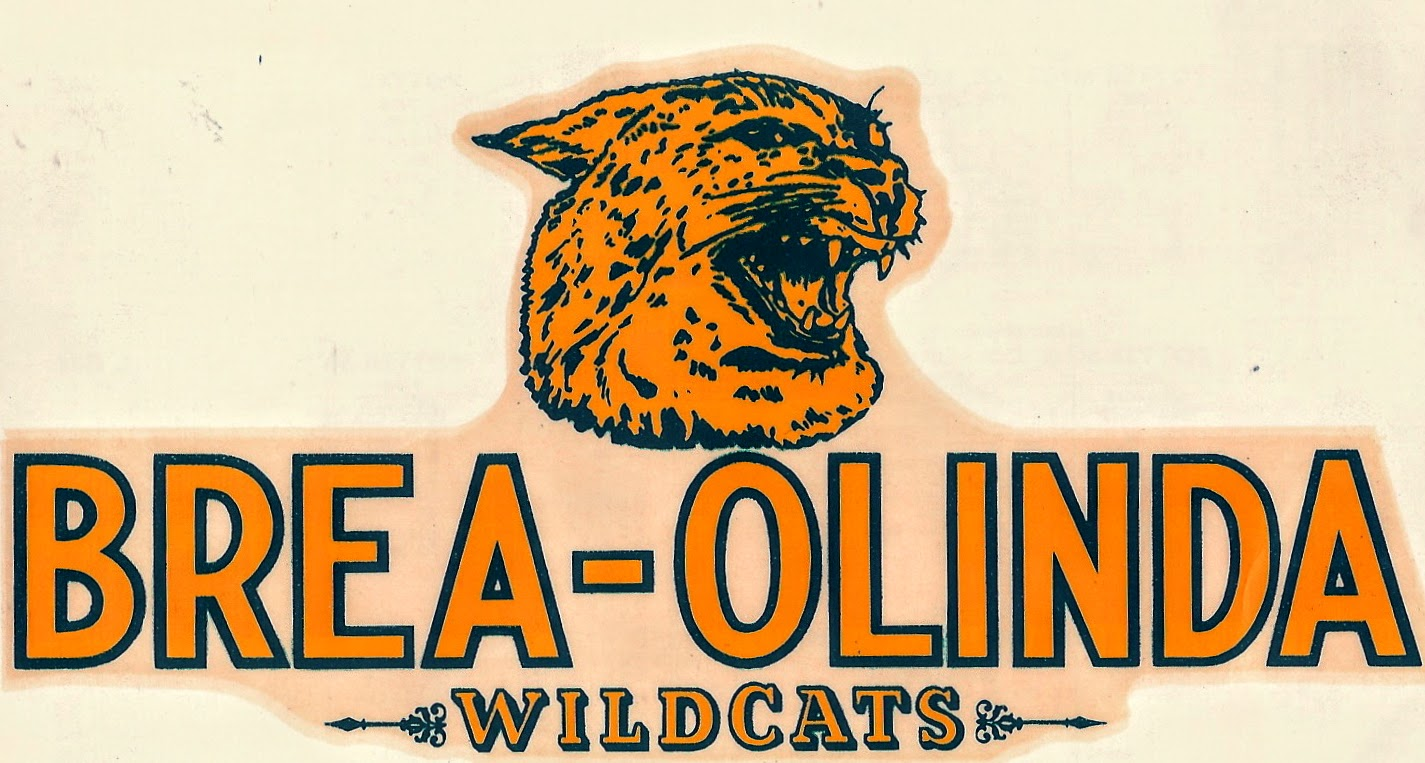 Brea-Olinda Wildcats decal (Photo Courtesy of Terry Sullivan)